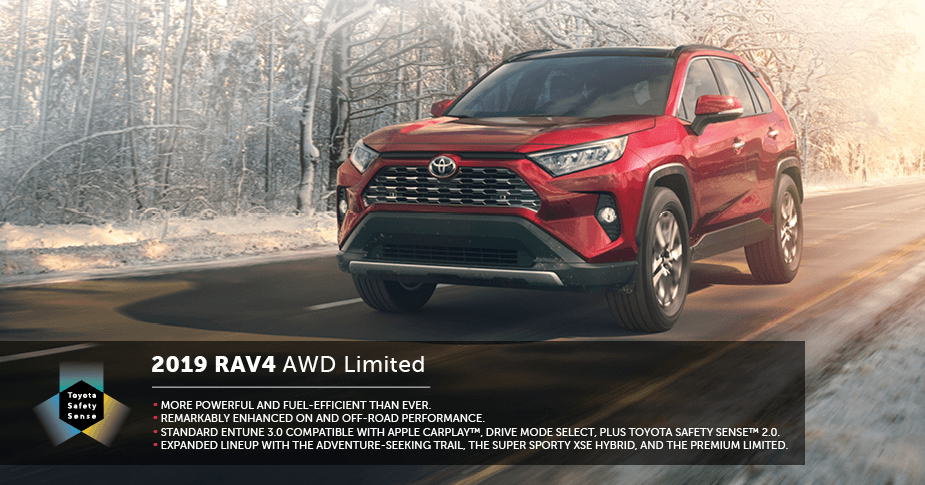 rav4-graphic
